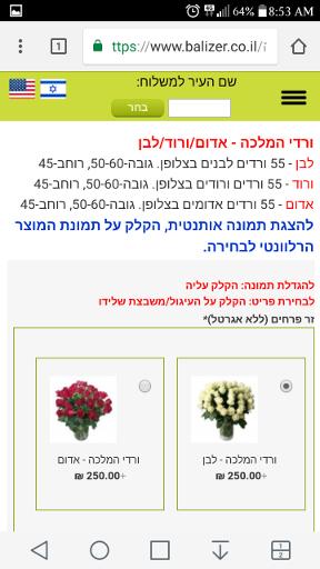 """באליזר - 55 ורדים 250 ש""""ח"""